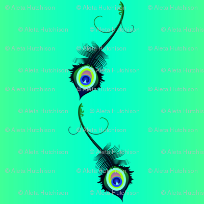 peacock_feather6