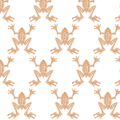 Fabulous Frogs - Soft Orange/White