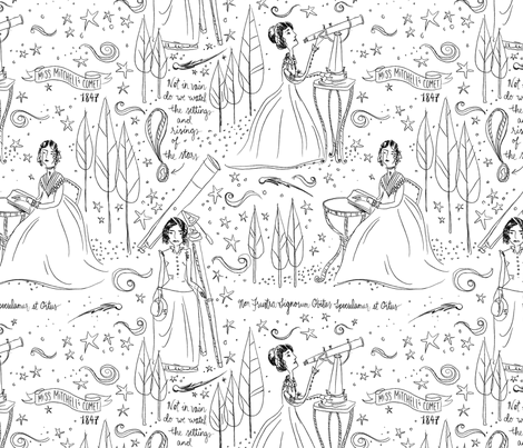 Miss Mitchell's Comet fabric by sammyk on Spoonflower - custom fabric