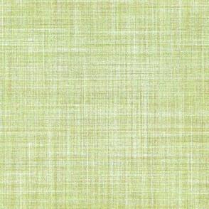 Linen in Willow Green
