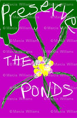Preserve The Ponds