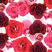 Repeatroseprint_shop_thumb