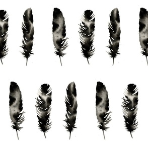 Modern Feathers