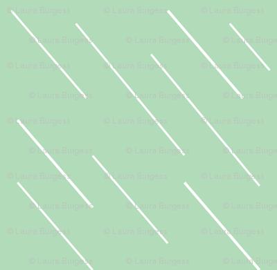 Rain in Mint