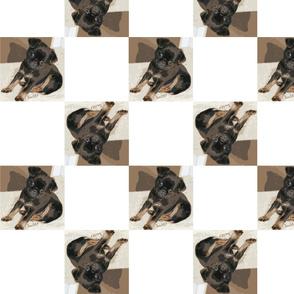 Petit_pattern2