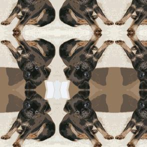 Petit_pattern11
