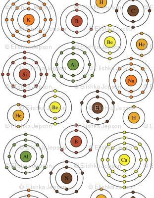 Periodic Shells (Fall)