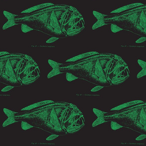 green fish blackprint