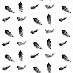 black feathers - medium