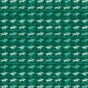 Muybridge Gallop (jade)