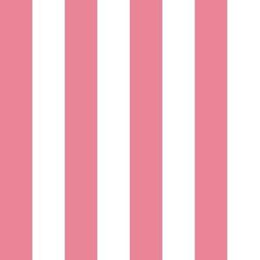 Stripes Pink & White