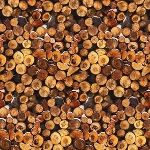 Logs by K. Steinmann