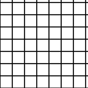 Small Black and White Square Grid