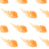 peach feathers - large