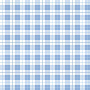 Nantucket Beach Tartan in Blueberry