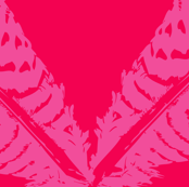 Graphic Feathers, Hot Pink