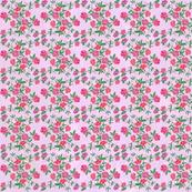 Pink_Rose_Pink