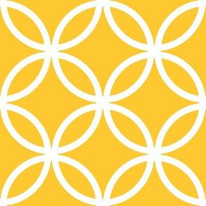 CercLattice White on yellow - 4