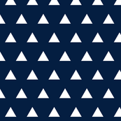 navy triangles