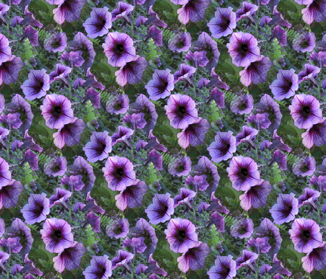 Purple Plum Petunias fabric by missourah_gal on Spoonflower - custom fabric