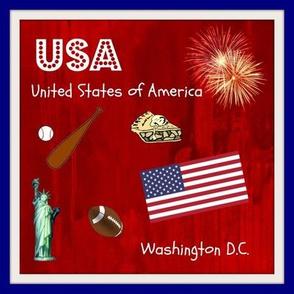USA quilt block / swatch