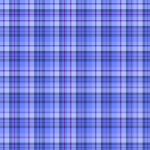 Blue Plaid