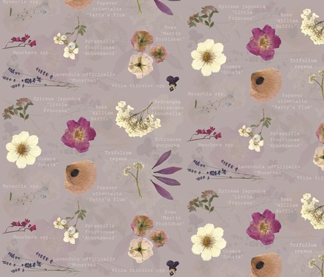 Rrrpressed_flowers_with_names_layered_shop_preview