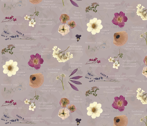 Aspiring Botanist fabric by graceful on Spoonflower - custom fabric