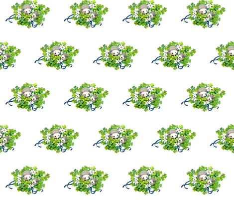 hedgies and shamrocks