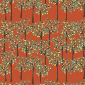 orange and lemon trees