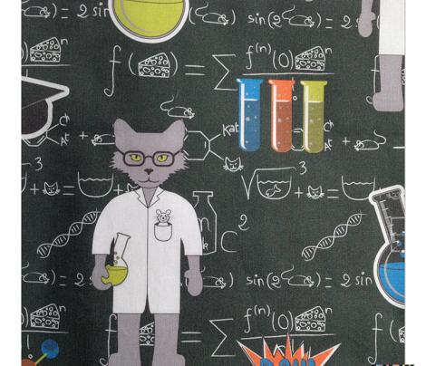 Professor Cat formulae