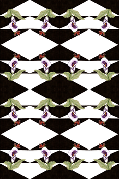 Lilah_lily_2 fabric by fashionita_boutique on Spoonflower - custom fabric
