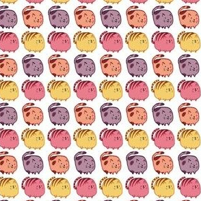 Cute Colored Cats