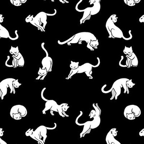 Kitties - White on black