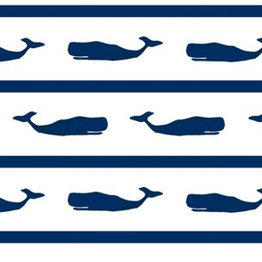 whale stripe