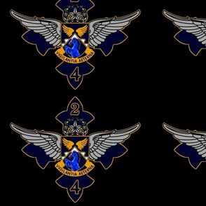2nd Battalion, 4th Aviation Regiment