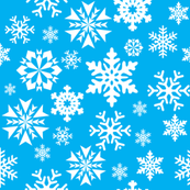 Blue And White Snowflake Pattern