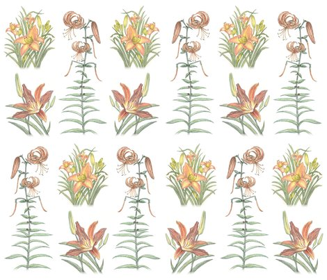 Rcolleenslilliesspoonflower_shop_preview
