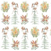 Rcolleenslilliesspoonflower_shop_thumb