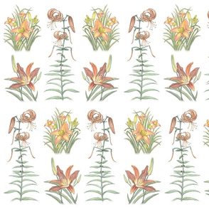 ColleensLilliesSpoonflower