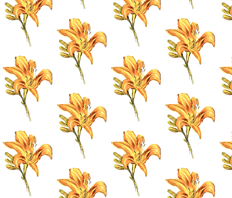 Orange Lily  fabric by mindfuldrawing on Spoonflower - custom fabric