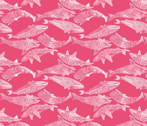 Rrrwhalespink_shop_preview