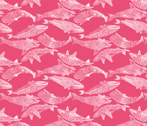 Whales in Pink fabric by mag-o on Spoonflower - custom fabric