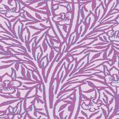 Radiant Orchid Vine