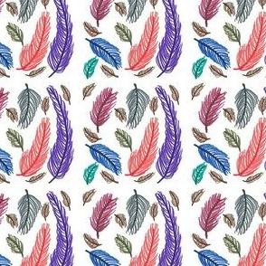 Colorful_Feathers