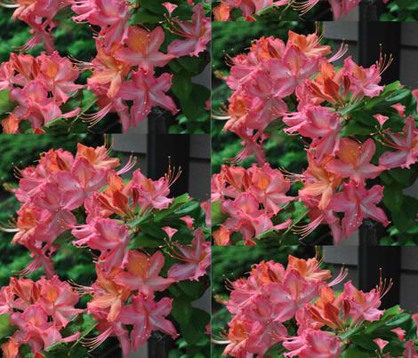Pink Profusion fabric by prof__lynn on Spoonflower - custom fabric