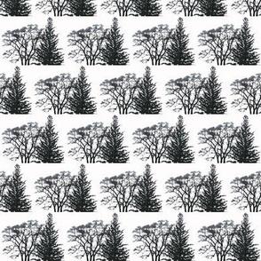 Wispy_Winter_Tree___Pine_B_W_