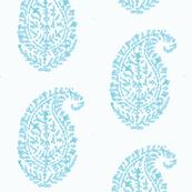 aqua indian design