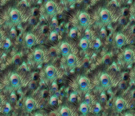 Rseamless_peacock_shop_preview