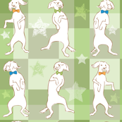 Dancing Nathan